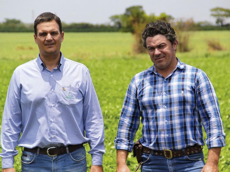 Para se proteger dos efeitos climáticos, que comprometeram o trabalho da temporada anterior, o produtor da região de Barretos, João Paulo Sestari encontrou uma solução junto com a Copercana Seguros