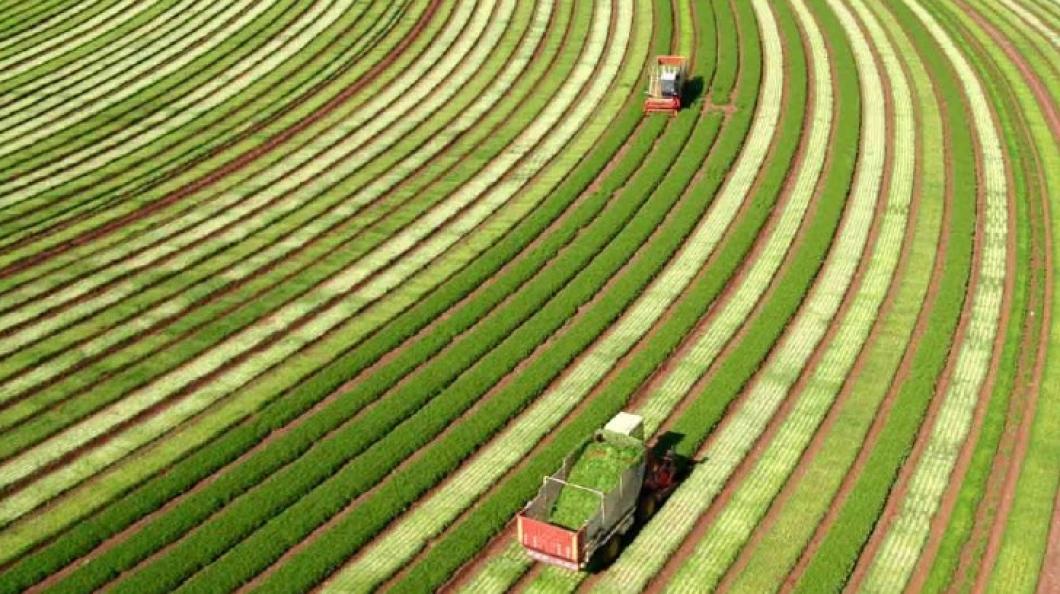 O Agro não para: Missão Agtech Israel 2020 vem aí