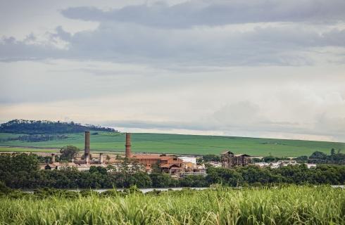 Uma visão realista de toda a cadeia do setor sucroenergético