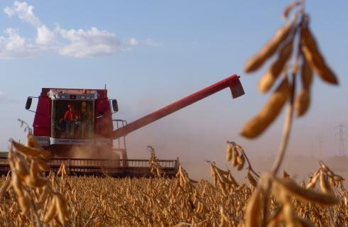 Novidades na pesquisa de amostragem de perdas na colheita mecanizada de grãos