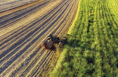 Estudo dos custos com reparo e manutenção em colhedoras de cana-de-açúcar