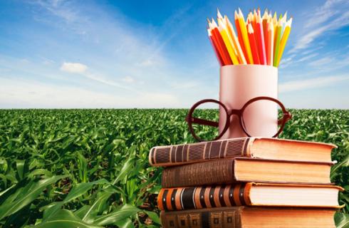 Plantando verdades e colhendo conhecimento