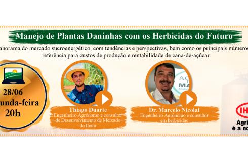 O combate às plantas daninhas e os herbicidas do futuro
